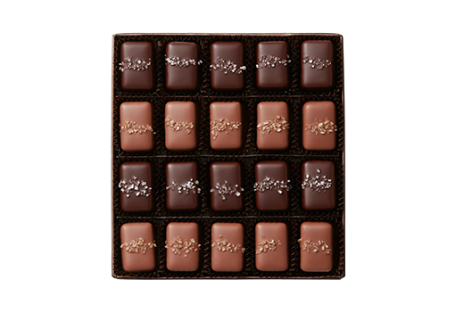 20pc-gray-smoked-caramels-bronze-tropic-SafeCrossings