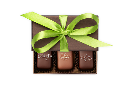3pc-salted-caramels-bronze-bright-green