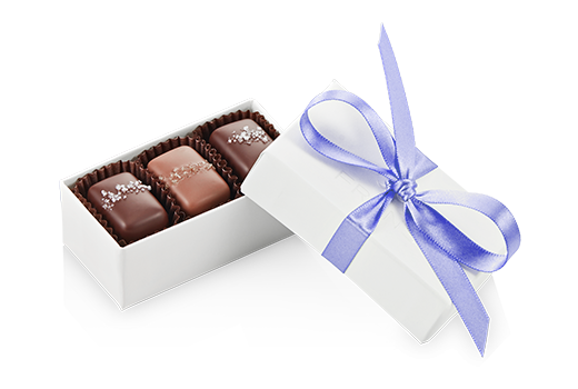 3pc-salted-caramels-ivory-iris-angle-FY20